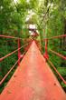 Bridge to the jungle,Trang,Thailand