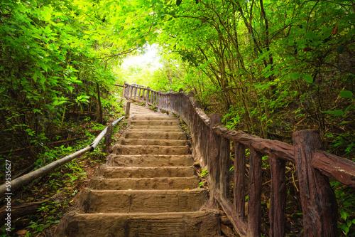 Zdjęcia na płótnie, fototapety na wymiar, obrazy na ścianę : Stairway to forest, Kanchanburi,Thailand