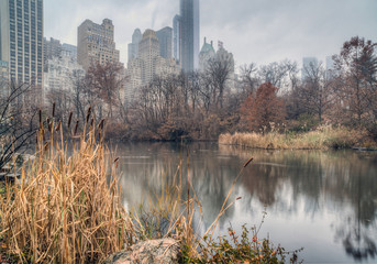 Central Park, New York City on foggy day