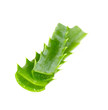 aloe vera isolated on white