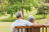 Rear view of senior couple sitting on bench at park