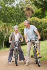 Cheerful senior couple on cycle ride in countryside