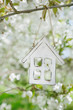 Little wooden house in Spring with blossom cherry flower sakura