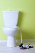 White toilet bowl and cleaner things in a bathroom