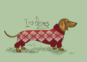 Illustration with Dachshund dog