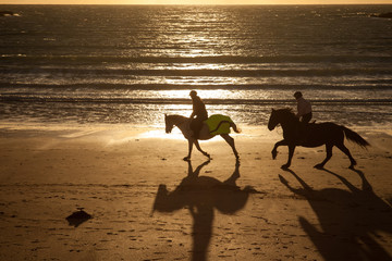 Horse riders at sunset