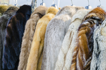 Row of coats made of animal fur