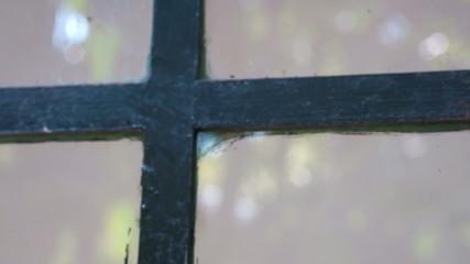 Glass windows secured with a Metallic padlock