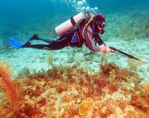 Scuba Diver with Spear Gun