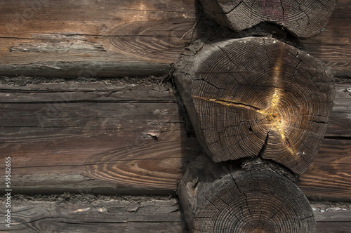 Detail of old wooden log