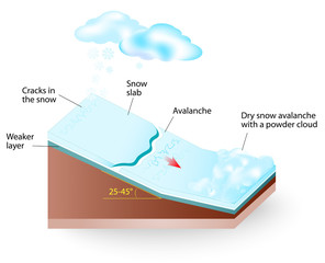 snow avalanche Vector diagram