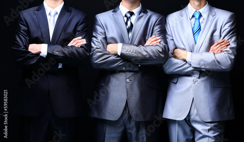 Group portrait of a professional business team - 59583021