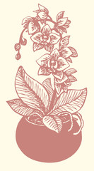 Vector drawing. Flowering branch of orchid in a round vase