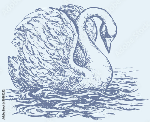 """Vector drawing of a series of sketches """"Birds"""". Swan"""
