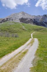 Camino en las campas de Urbía, País Vasco (España)