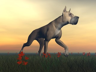 Great dane dog - 3D render