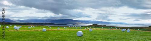 Plexiglas Singapore Icelandic Rural Landscape.