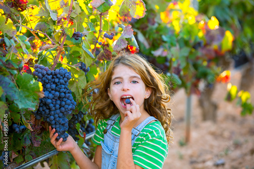 Farmer kid girl in vineyard eating grape in mediterranean autumn