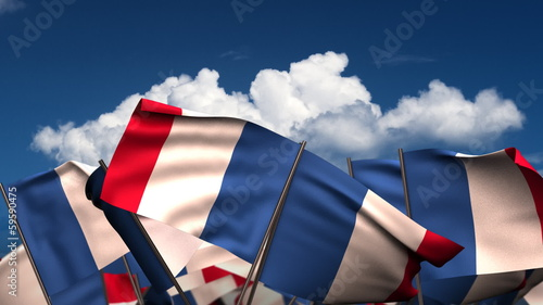 Waving French Flags