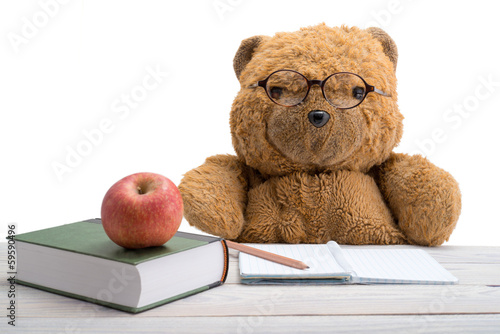 Teddy Bear in school