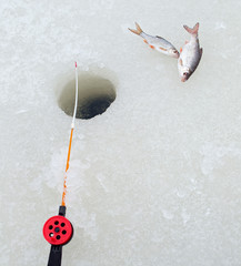 Winter fishing rod and fish on ice