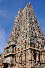 The Meenakshi Temple, Madurai (India)