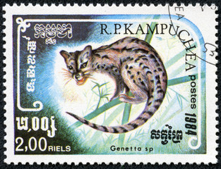 stamp printed by Cambodia, shows genetta sp