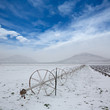 Cereal fields with irrigation wheels with snow in Nevada