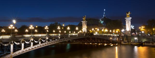 Le pont Alexandre 3 illuminée à la tombée de la nuit - Paris