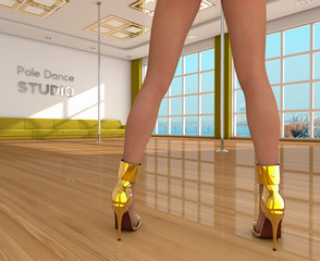 Pole dance studio and girl