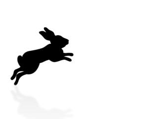 springender Hase - jumping bunny