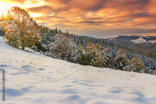 Beautiful morning lights and winter panorama,Carpathians