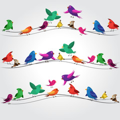 many colorful birds