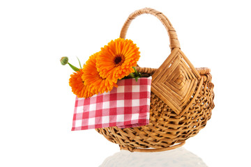 Orange marigolds in wicker basket