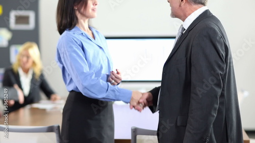 Business people doing handshake for congratulation