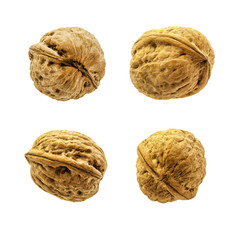 Four walnuts isolated on a white background