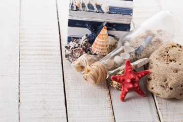 Seashells on wooden background. Summer concept.