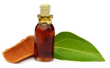 Cinnamon leaf with bark and essential oil