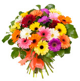 Fototapety Bouquet of colorful gerberas