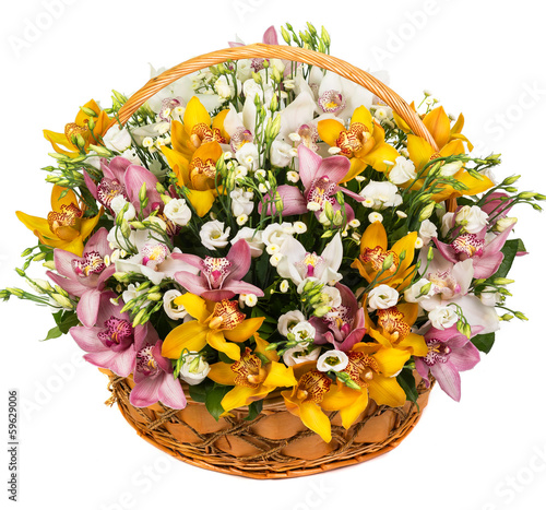 Natural orchids in a basket