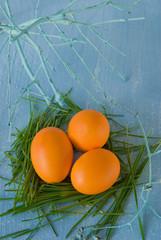egg, grass