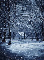 Hut in winter forest in the frosty moonlight night