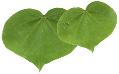 duo de feuilles forme coeur