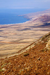 coastline lanzarote  spain africa and house field
