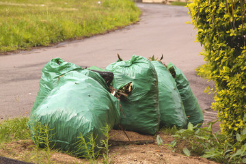 Gargbage Bags Waiting for Collectionon Side of Road