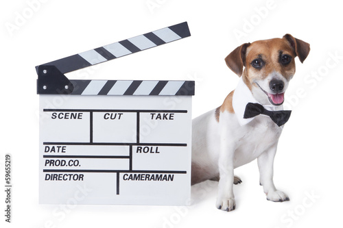 Foto op Aluminium Dragen Pet movie star