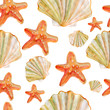 Seashell and sea star watercolor illustration