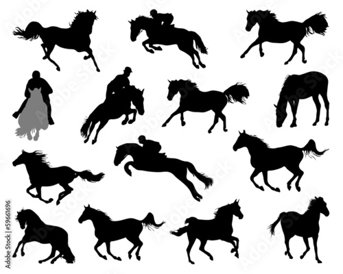 Silhouettes of horses on white background, vector