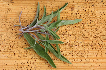 Fresh Sage leaves on a wooden background