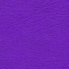 lilac leather texture closeup.